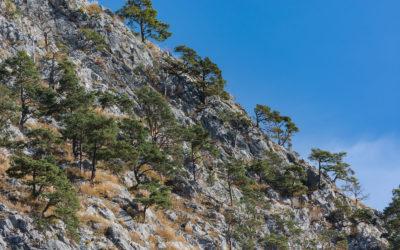 Klettern in Nassereith im Herbst