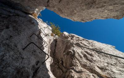 s'Schuasta Gangl | Steinplatte Waidring