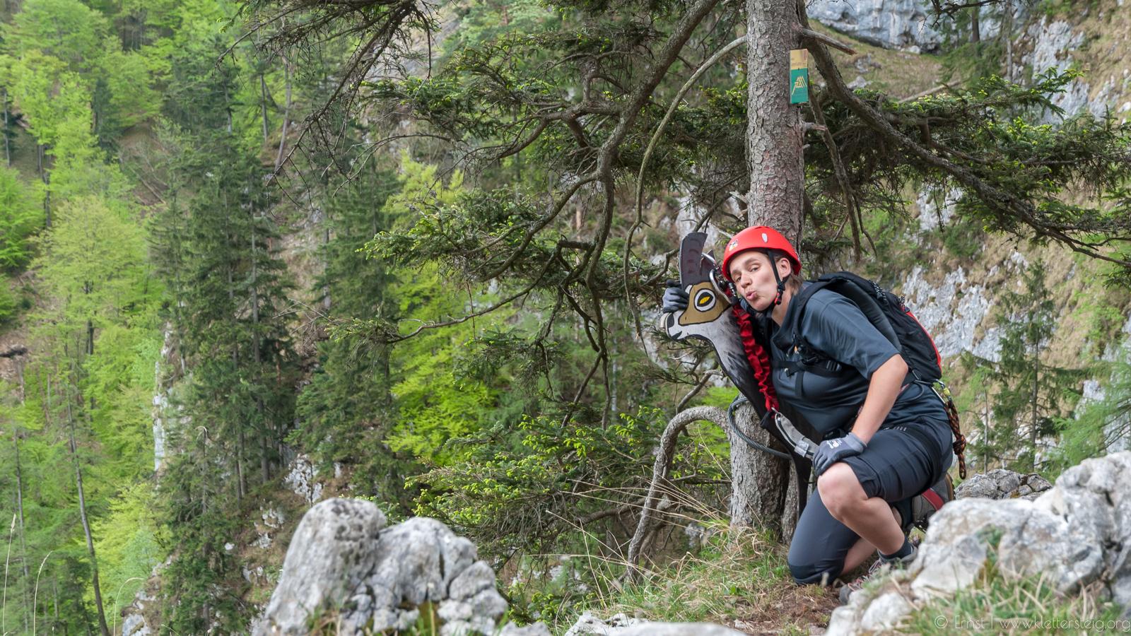 Klettersteig Mondsee : Drachenwand klettersteig mondsee klettersteige